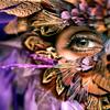 ceitfianna: (feathered face)