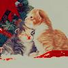 ceitfianna: (holiday kittens)