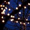 ceitfianna: (stars in a tree)