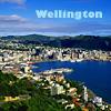 piwakawaka: (Wellington)