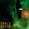 yhlee: (hxx geese 1)