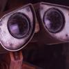 gwynedd: ([Wall-E] PLEADING EYES OF MOE)
