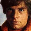 owl: Commander Luke Skywalker (lukepilot)