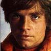 owl: Commander Luke Skywalker (luke)