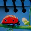 warkitten: Ladybug (Misc - Ladybug)