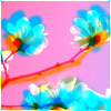 stretch_panic: image of flowers with distorted colors (Default)