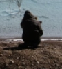alexs70: Dead Sea (pic#1912233)