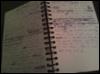 whitemale: Photo of a handwritten journal (journal) (Default)