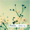 """orchidfire: White flowers with """"poesía... eres tú"""" caption. (Default)"""