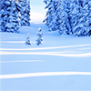 seat_five_girl: (winter wonderland)