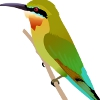 seat_five_girl: (cubefall-2011: blue-tailed bee-eater)