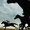 krislaughs: (horse race)