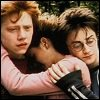 owl: Harry, Ron and Hermione group hug (trio)