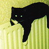 owl: Smudge on a radiator, eyes lamping (smudge2)