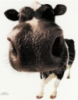 epershina: (cow)