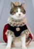 katussja: (Королевна)