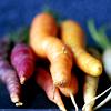 nimthiriel: (Carrots)