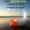 100yanova: (жёлтая утка)