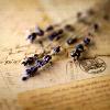 100yanova: (письма)