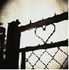 gobtastic: (Barbed wire heart)