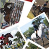 equestrian: (Equestrian || Collage)