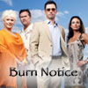 burn_notice: (Burn Notice || cast)