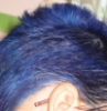 talia_et_alia: Photo of my short blue hair. (Default)