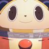 kingofthetvworld: (🐻     Bear - Smile!)