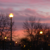 evilhippo: sunset (sunset)