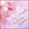 "dharma_slut: Delicate pink cherry bloosms say; ""I am a fragile fucking flower"" (speshul)"