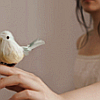 sideways: [o] manmade bird perched on girl's finger (►opposite than a foot in the door)