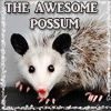 klingonlady: (AWESOME possum)