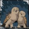 leoncia_ir: (совы нежные)