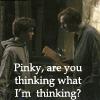 rynne: (pinky thinking)