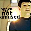 saffiter: (Spock Not Amused)