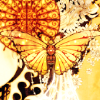 revolutions: A drawing of a butterfly with orange wings against an orange background (orange butterfly)