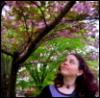 usagi: (purple hair, sakura)