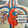 "metatxt: graphic of human circulatory system and sign pointing to heart saying ""you are here"" (art: you are here <3)"
