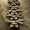 outlineofash: A column of skulls and crossbones. (Fierce - Skulls)