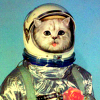 kerpingtack: astronaut cat's school picture (deep space turtle chase)