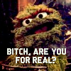 jpadamson: (Sesame Street - Oscar - Bitch are you fo)
