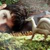 masqthephlsphr: (dragonlord)