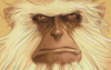 communi_kate: (monkey)