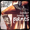"etharei: Picture of a male leg in medieval wear and text ""Gondor has no pants. Gondor needs no patns."" (Gondor!Pants)"