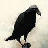 thequietgirl: (Poe-ish)