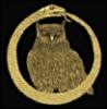 arliss: owl in ouroboros (O_o)
