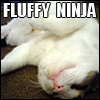 helenic: (fluffy ninja)