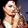 trigons_child: (Can haz kitty)