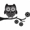 girlsknowbest: (owl)