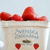 lemonadeandgin: (strawberries)